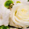 0007-100910-Liz-Andy-Wedding-©8twenty8_Studios