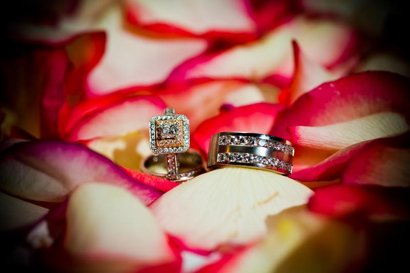 0733-120721_Alani-Mark-Wedding