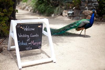 0002-120616_maegan-josh-wedding-©828Studios-858 412 9797