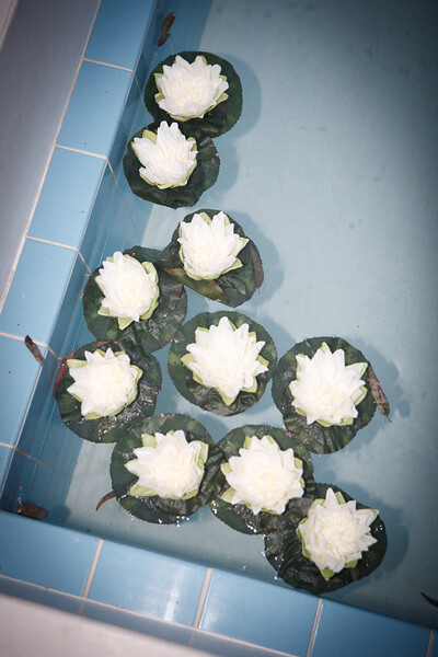 0711-120616_maegan-josh-wedding-©828Studios-858 412 9797
