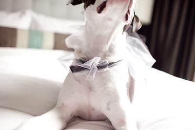 130208-tim-louise-wedding-33
