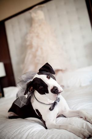 130208-tim-louise-wedding-79