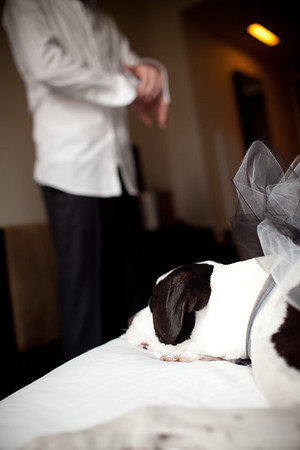 130208-tim-louise-wedding-38