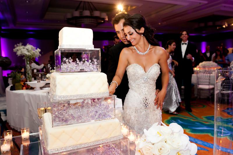 0708-120901-amalis-houman-wedding-©8twenty8-Studios