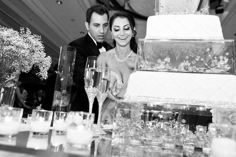 0711-120901-amalis-houman-wedding-©8twenty8-Studios