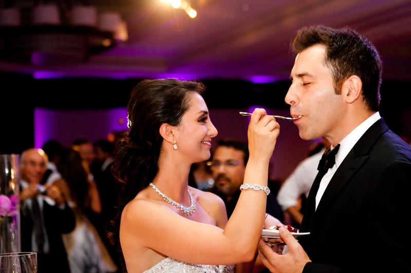 0713-120901-amalis-houman-wedding-©8twenty8-Studios