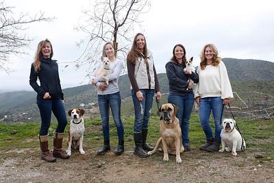 MOVIE DOGS & THEIR GIRLS