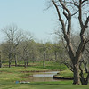 MPI-HAC Golf Tournament 2010