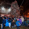 2014 Montefiore Park Tree Lighting