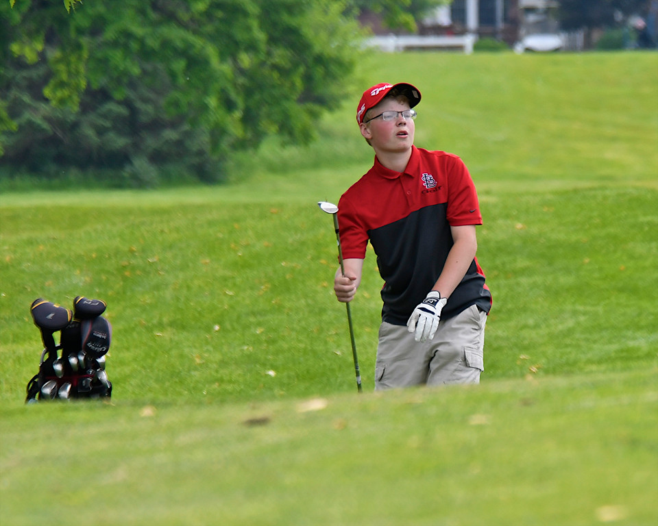 . Area teams turned in strong scores with Shepherd taking the D3 Region 17 Boys Golf crown and Grant Mills of St. Louis earning Medalist honors at Pine River Country Club in Alma Wednesday, May 30, 2018. (Sun photo gallery by Skip Traynor)
