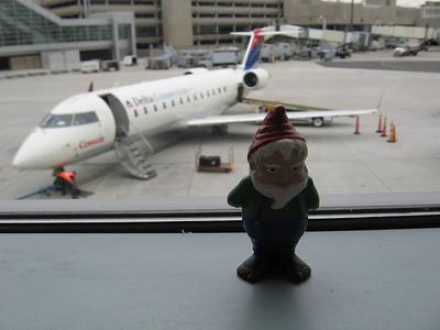 MS Global - Mark Sereda & the Gnome