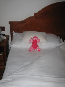 "Stage 1: ""Bacon\"" relaxes in a ride leader\'s bed."