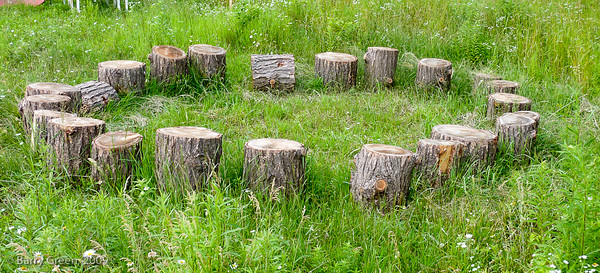 Outdoor Classroom  20090705-Kavanah Garden-31