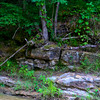 20090718_MKittrell_005374