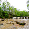 20090328_MKittrell_005318