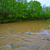 20090328_MKittrell_005320