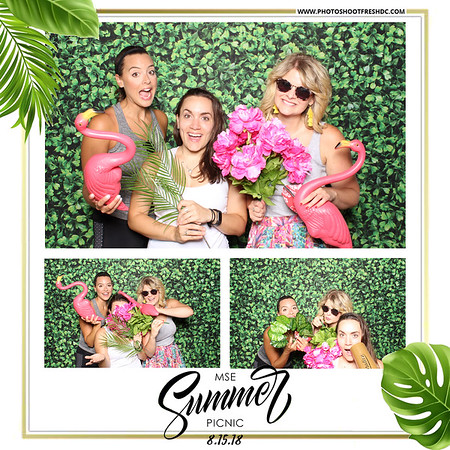MSE Summer Picnic