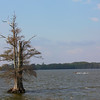 20110408_MKittrell_006016