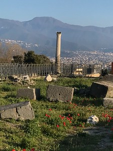 We then rode the train down the coast to Pompeii where we saw the remnants of the once thriving port city. Ben gave a great lesson on the House of the Surgeon. We returned to Naples for a pizza dinner where Julia Roberts enjoys pizza.