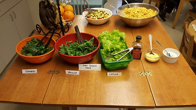 We supplemented today's mac and cheese with fresh greens from the aeroponic growing system which include lettuce, arugula, and spinach.