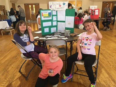 MSLF Science Fair 2017