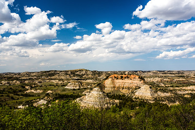 Theodore Roosevelt National Park - North Dakota-8934