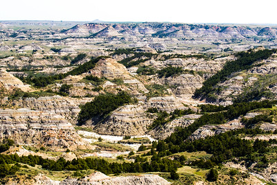 Theodore Roosevelt National Park - North Dakota-7834