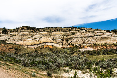 Theodore Roosevelt National Park - North Dakota-7866