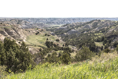 Theodore Roosevelt National Park - North Unit - North Dakota-8982
