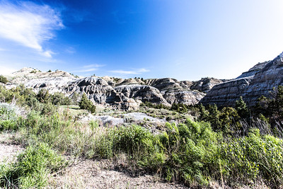 Theodore Roosevelt National Park - North Unit - North Dakota-8953