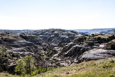 Theodore Roosevelt National Park - North Unit - North Dakota-8980