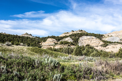 Theodore Roosevelt National Park - North Unit - North Dakota-8950