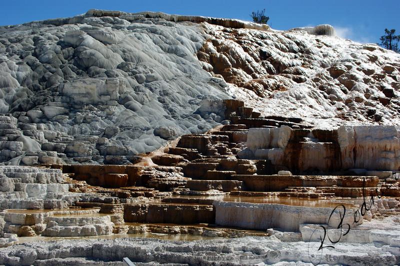 Photo By Bob Bodnar,,,,,,,,,,,,,,,,,,,,,,,,,,,,,,,,,,,Mammoth Hot Springs, Yellowstone National Park