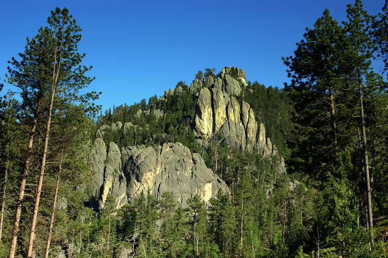 Photo By Bob Bodnar....................................... View on Needles Scenic Highway,  Black Hills of South Dakota