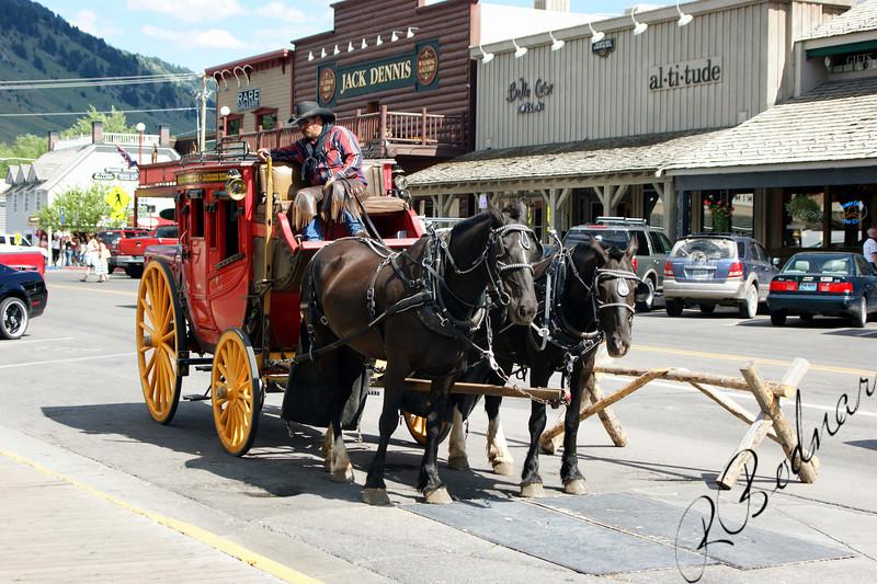 Photo By Bob Bodnar...........................Cowboy offering stagecoach Rides,  Jackson Hole WY.