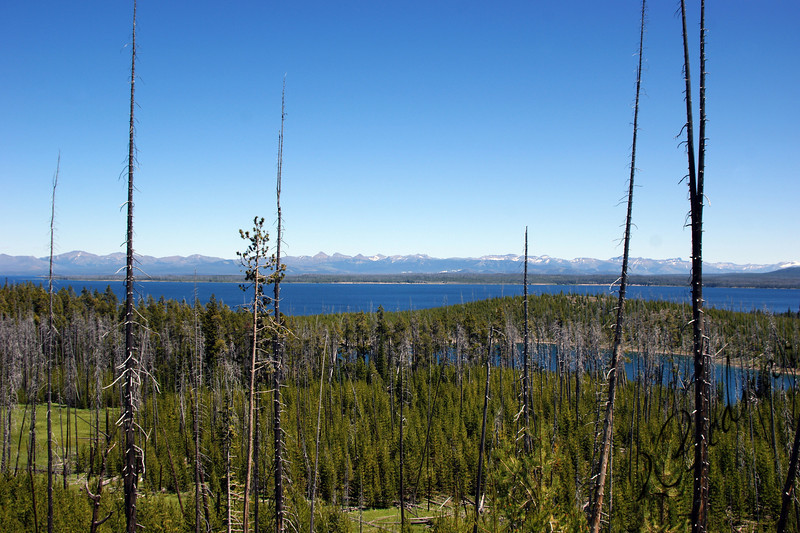 Photo By Bob Bodnar.............................View of the Grand Tetons from a distance