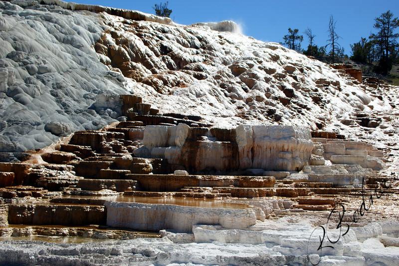 Photo By Bob Bodnar.........................................Mammoth Hot Springs, Yellow National Park