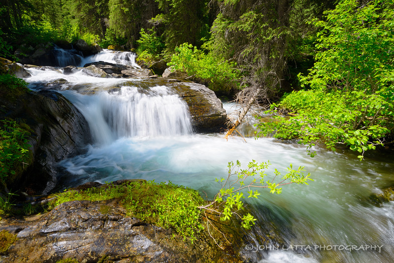 Trout Creek Cascades