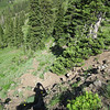 Same spot, just looking down the trail.  You can see the rock to the right of my shadow.  The type that your front tire doesn't like at all.  I rode about 80% of the trail which isn't even a mountain bike specific trail, and I didn't see any other tracks on it...so I felt pretty good about my skills : )