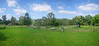 view from outdoor seating area, Nymboida Rv is behind the first row of trees, down in the valley