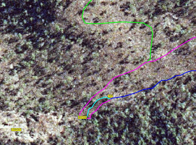 """Blue=existing track, light blue = """"B line"""" (2 way), pink = spiderbait extension, green = proposed DH track"""