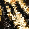 Black / Gold Mermaid Curtain