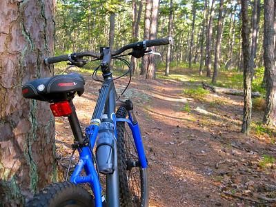 Penn Branch Trail