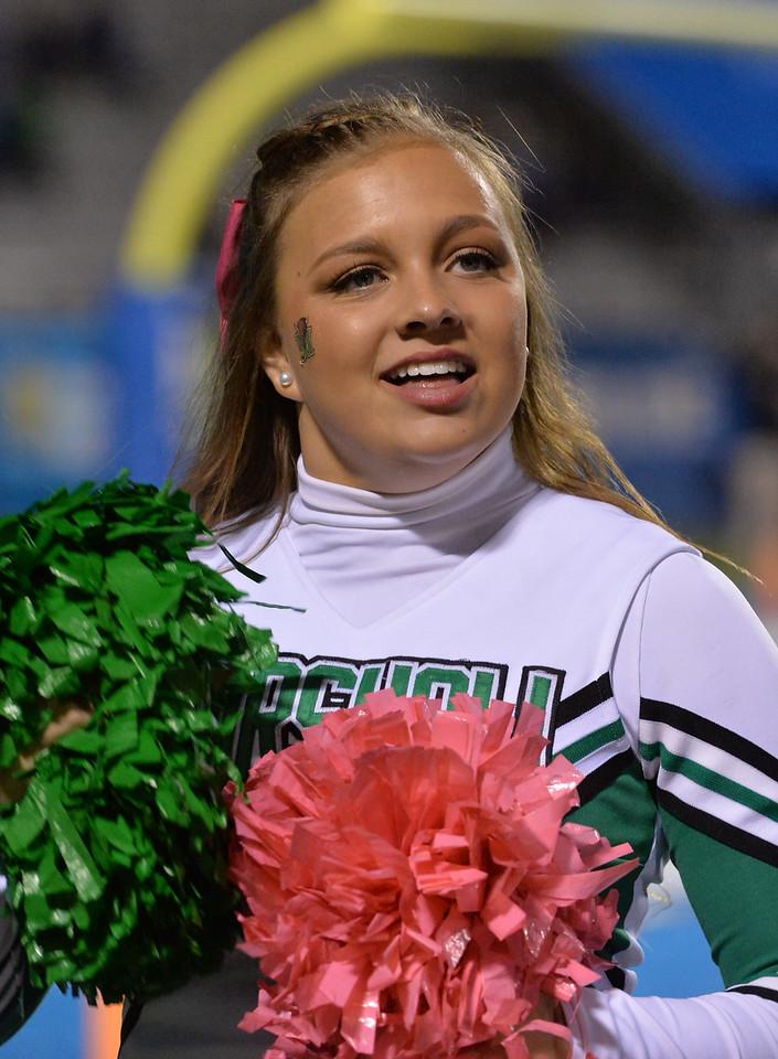 cheerleaders5293