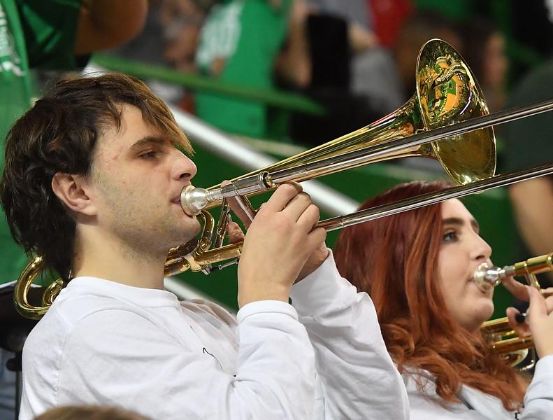 band0619