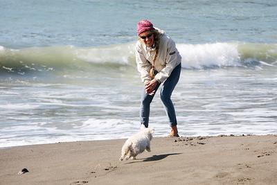 MUIR BEACH DOGS 0003