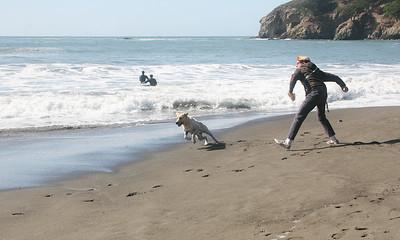 MUIR BEACH DOGS 0026