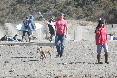 MUIR BEACH DOGS 0050