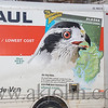 I included this  UHAUL truck as it was leaving as the Goshawk picture was done from an image I had taken years ago at the ALASKA ZOO.