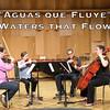 JSN-Recital2016-Aquas-que-Fluye
